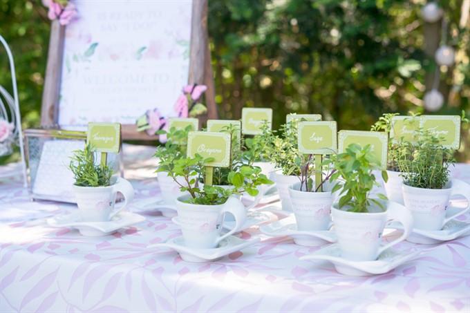 Wedding theme ideas garden image junglespirit Gallery