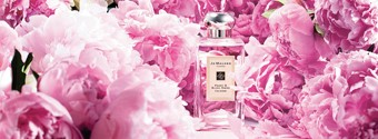 5 Timeless Wedding Fragrances We Love