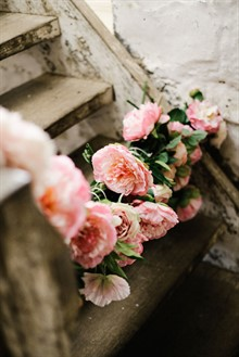 Image by Brown Paper Parcel Photography