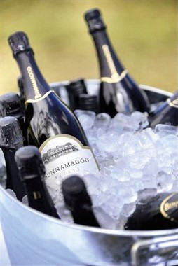Bunnamagoo Wines | Wedding Venue | Mudgee Wines