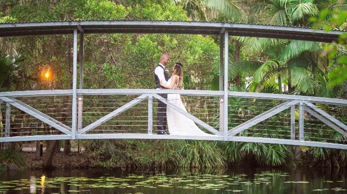 Angourie Rainforest Resort | Wedding Venue | Wedding Photography