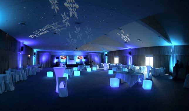 Pro Sound And Lighting | Music & Entertainment | Wedding Reception