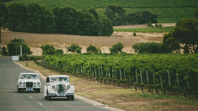 Classic Jags | Wedding Transport | Adelaide