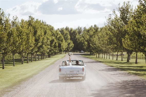 Bunnamagoo Wines | Wedding Venue | Vineyard Wedding