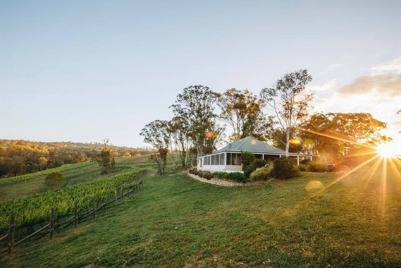 Dryridge Estate | Wedding Venue | Blue Mountains Winery