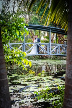 Angourie Rainforest Resort | Wedding Venue | Destination Wedding
