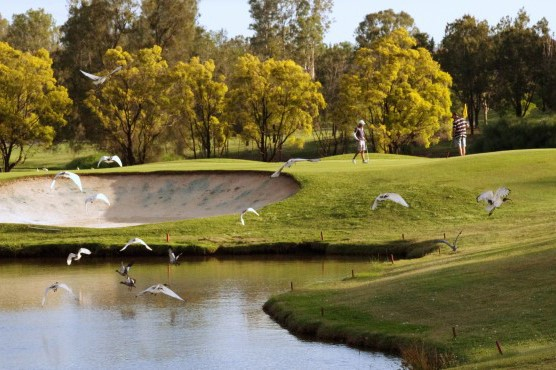 McLeod Country Golf Club | Wedding Venue | Queensland Golf Course